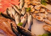je spousta ryb bezpečná seznamka